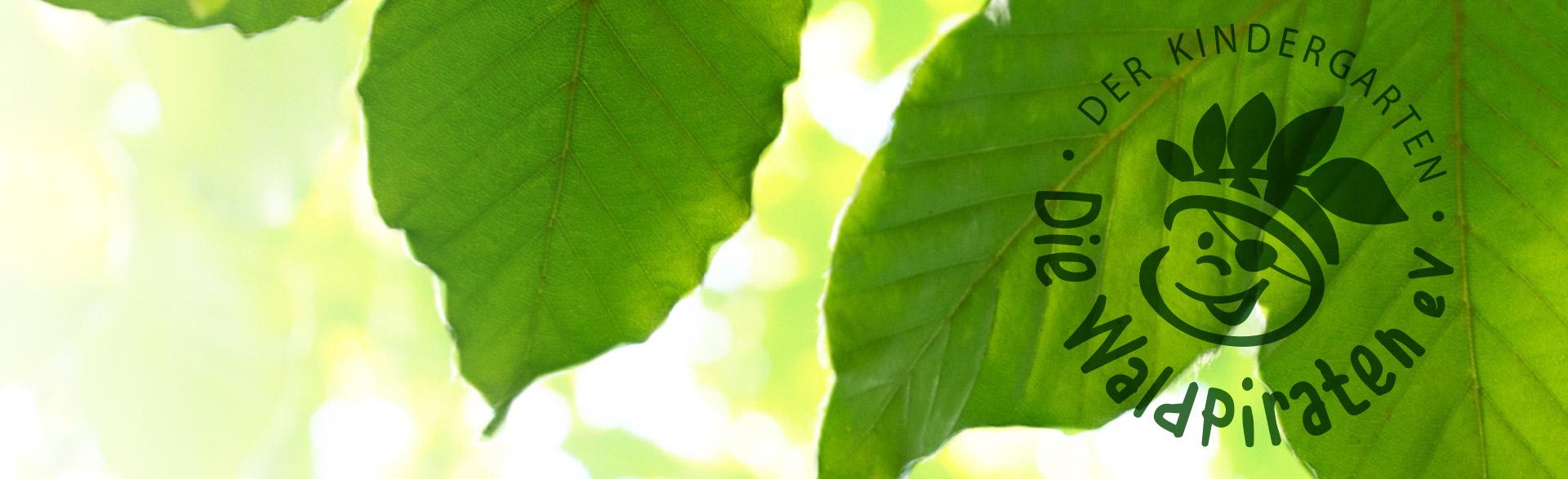 lichtdurchflutete Blätter, davor das Logo des Kindergartens Die Waldpiraten
