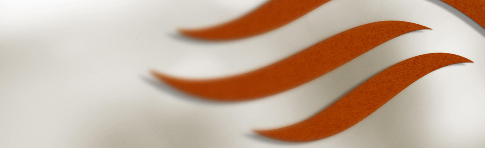 3 rostfarbene Schwingen eines Flügels auf beigem Hintergund